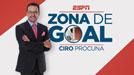 Zona de Goal